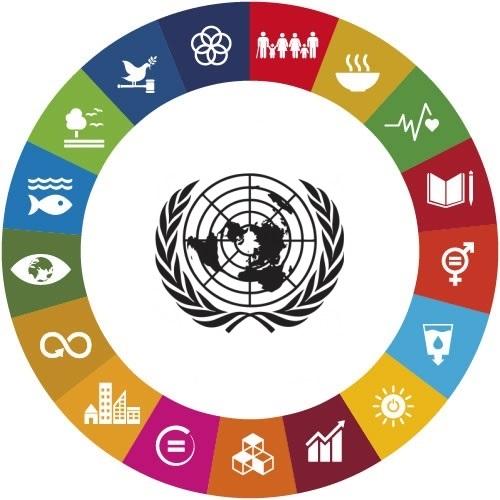 Un'introduzione agli obiettivi di sviluppo sostenibile