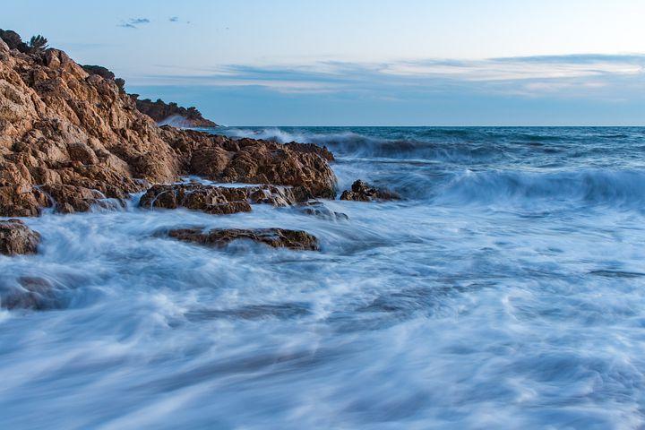 Gli effetti del rumore sugli oceani