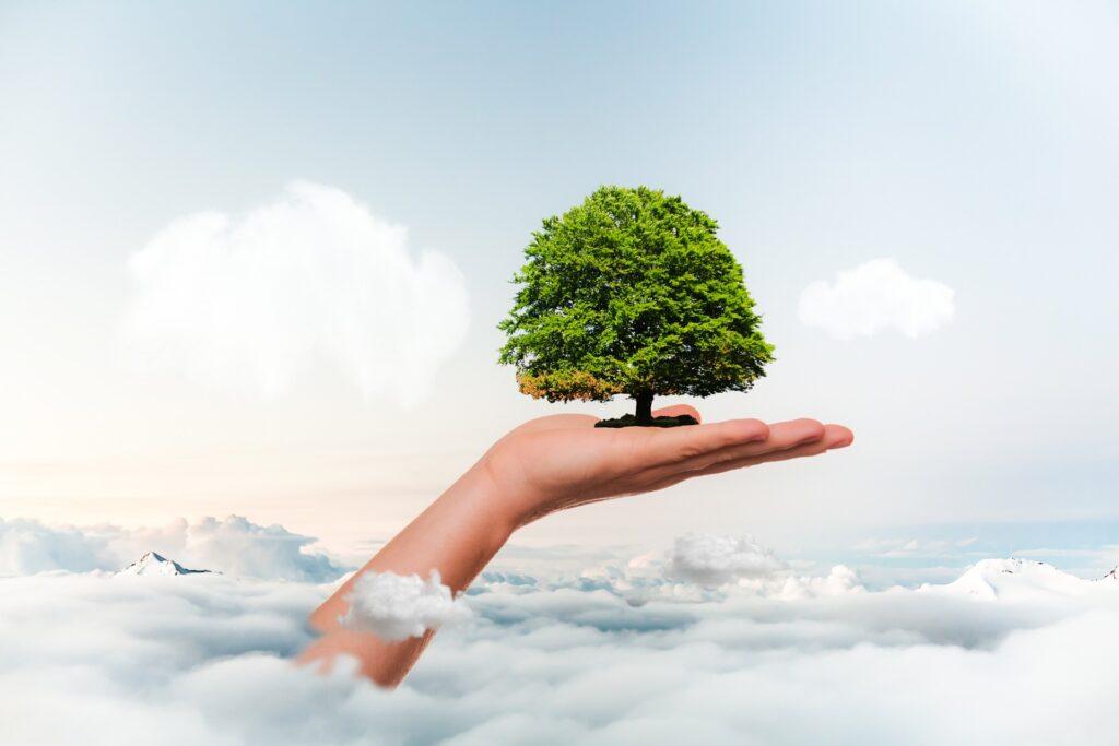 Oggi è la Giornata mondiale per la conservazione della Natura