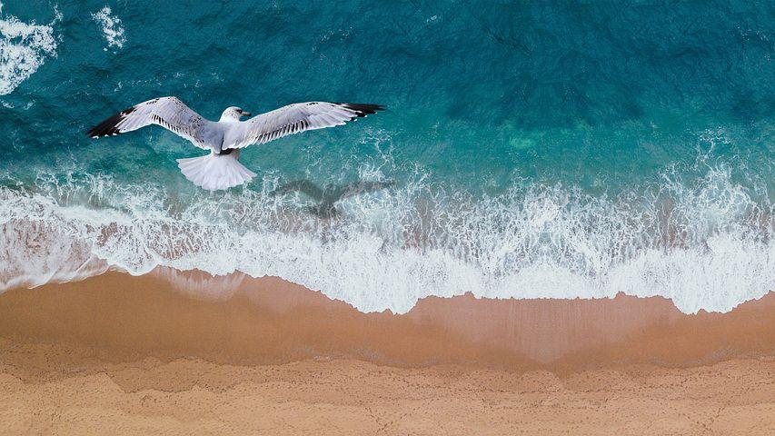 La Giornata del Mare: ecco cosa serve al nostro Paese