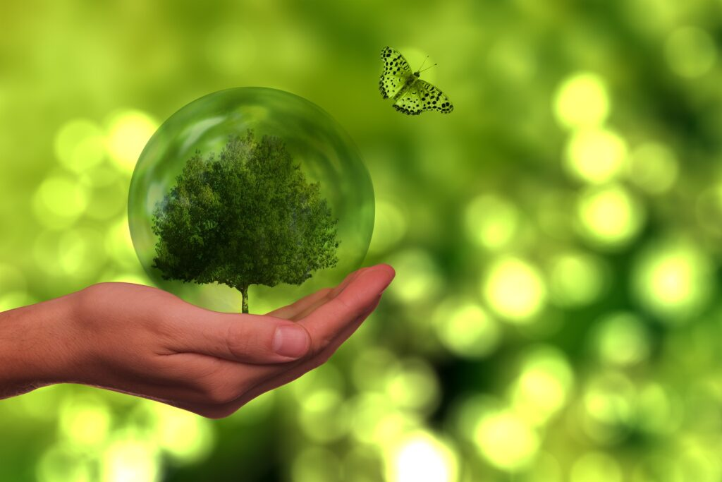 La Commissione Europea accoglie un maggiore controllo pubblico sugli atti dell'UE in campo ambientale